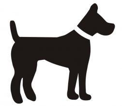 cachorro-generico