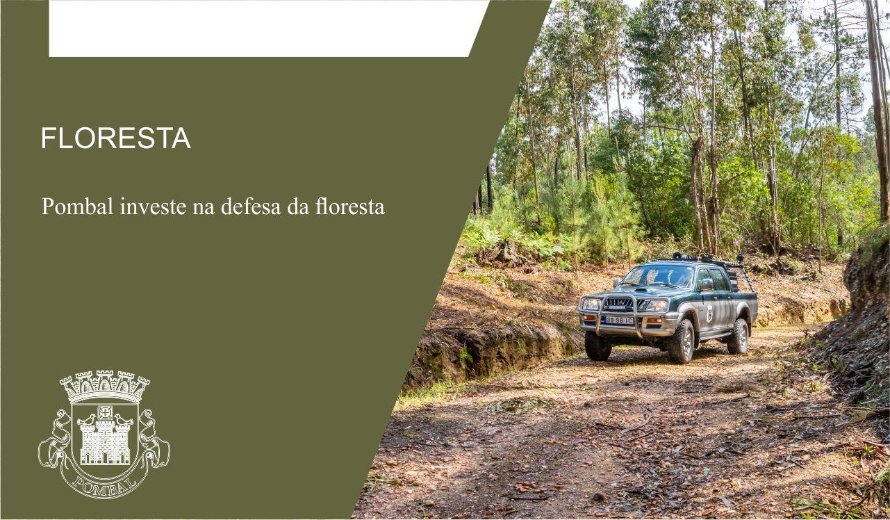 Pombal investe na defesa da floresta - Portal do Município de Pombal